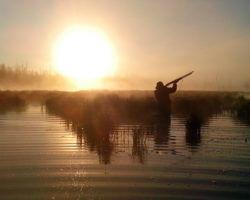 Охотник на утренней зорьке