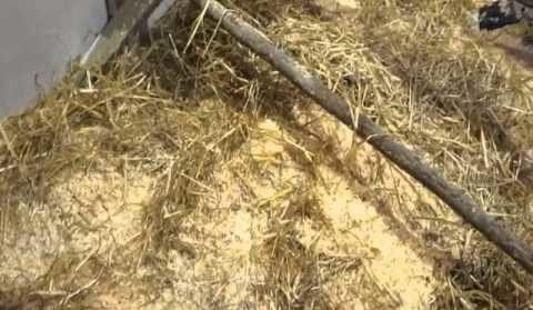 Сухая подстилка из соломы и тырсы