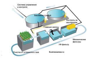 Вид и схема биореактора