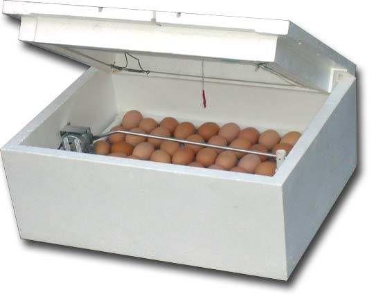 Инкубатор цифровой на 100 яиц