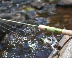 Спиннинг для ловли форели