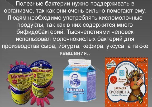 Кисломолочные бифидобактерии