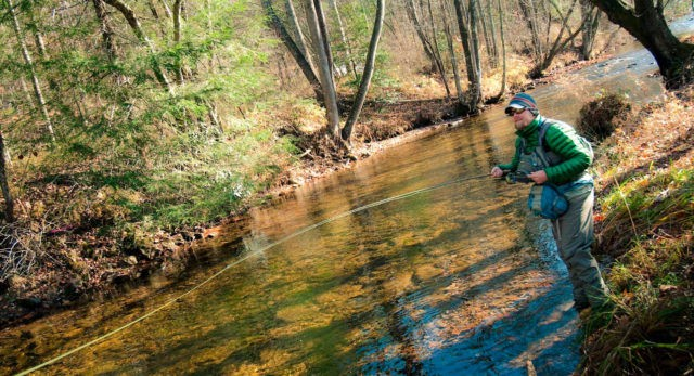 Профессиональные рыбаки рекомендуют ловить форель с берега